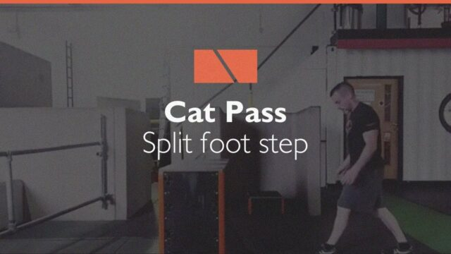 How to Cat Pass #07 – Split Foot Step